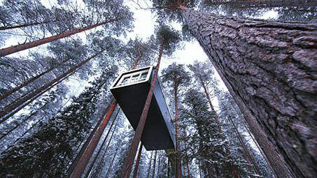 Treehotel 10 years
